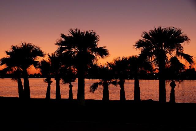 Alquilar apartamentos en la Costa del Sol